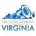 Shellfish Growers of Virginia